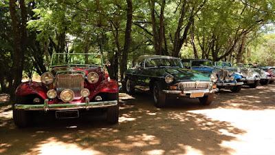 Um MG B 1979 ladeado por vários MPs: 43 ao total, fora alguns membros do Clube que vieram com outros carros.
