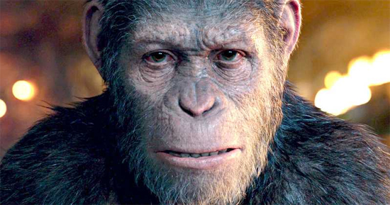 Caesar Planeta Macacos