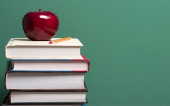 Φιλόλογος-Ειδική Παιδαγωγός αναλαμβάνει την μαθησιακή αποκατάσταση μαθητών Δημοτικού & Γυμνασίου