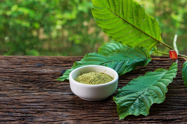 White Thai Kratom: Everything you need to know about
