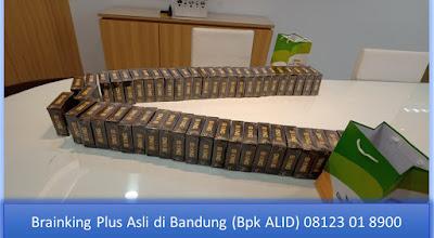 PROMOSI, 08123 01 8900 (Bpk. Alid), Brainking Plus di Bandung