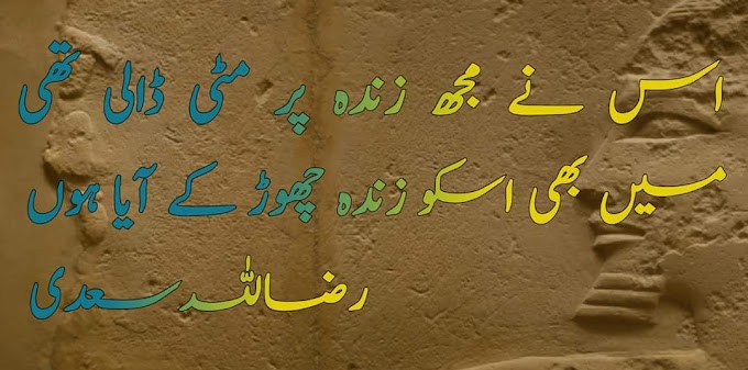 Sad poetry/poetry for love/sad poetry in urdu/whatsapps status poetry