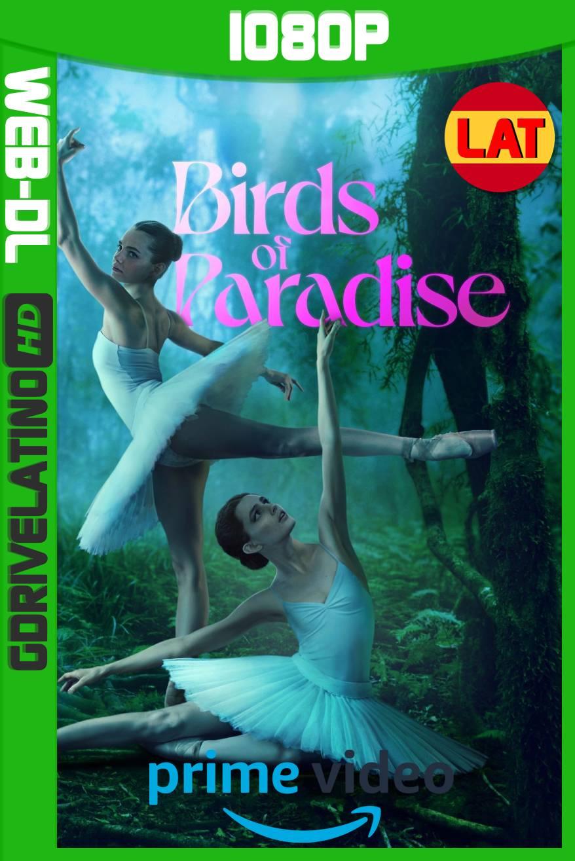 Aves del Paraíso (2021) AMZN WEB-DL 1080p Latino-Ingles MKV
