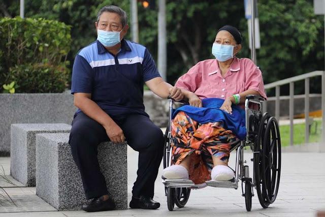 Mengenal Kanker Darah, Penyakit yang Diidap Ani Yudhoyono Semasa Hidup