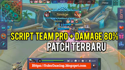 Script Pro Player Team and Damage 80% New Patch Mobile Legends
