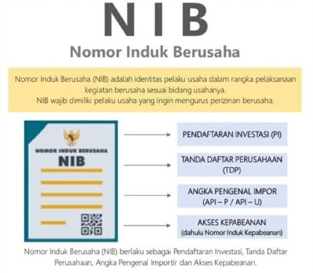 200 Ribuan NIB Telah Diterbitkan Sistem OSS Berbasis Risiko