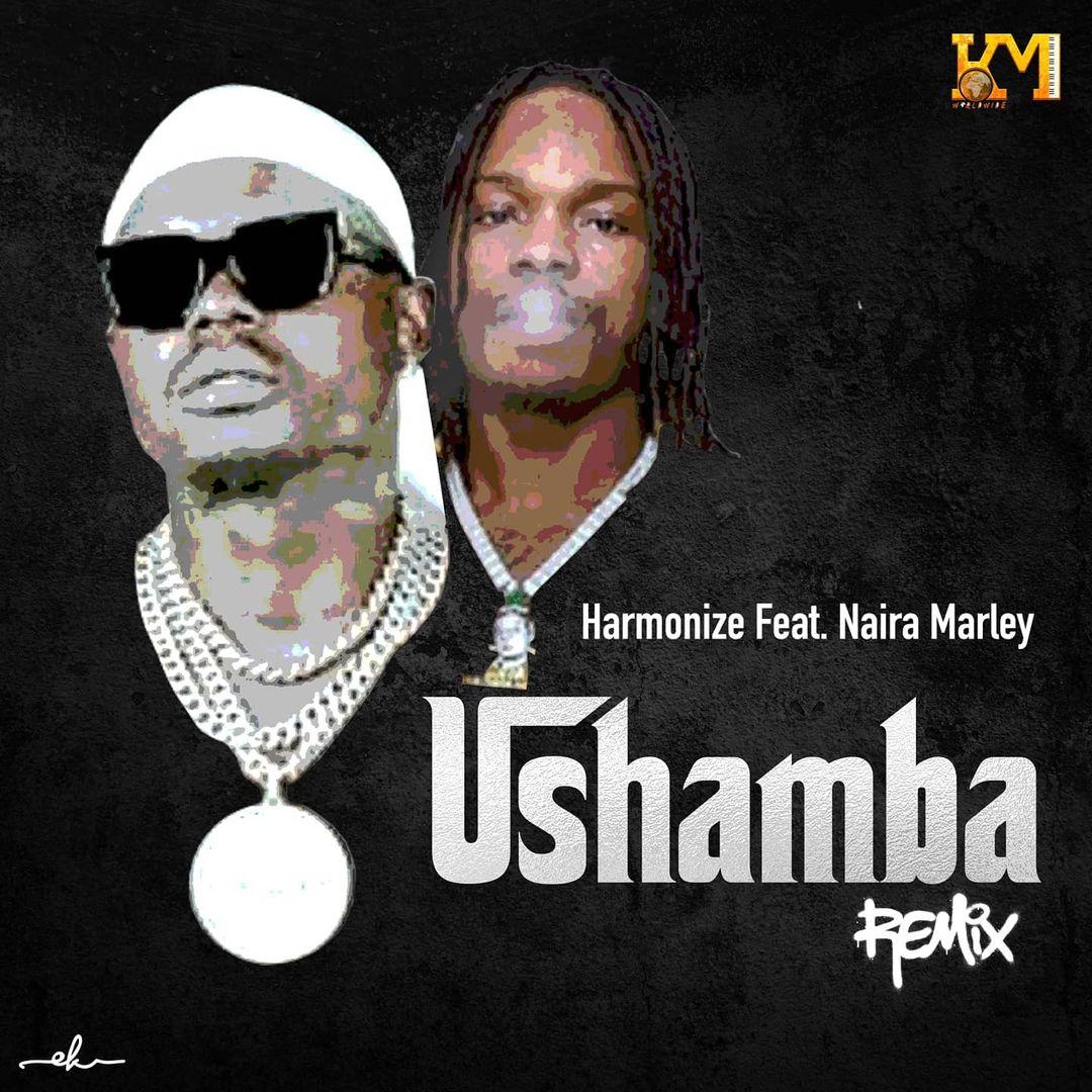 Harmonize Ft Naira Marley – Ushamba Remix