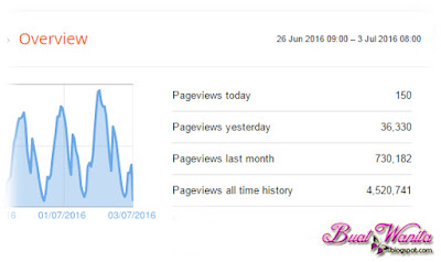 Pageviews Blog Buat Wanita