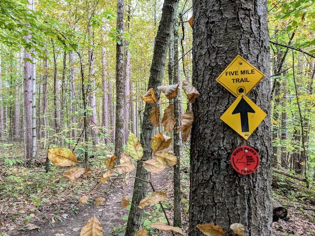 Saratoga Spa State Park Geyser Loop Trail