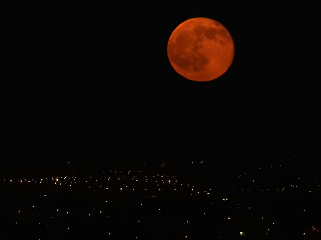 ירח אדום/כתום