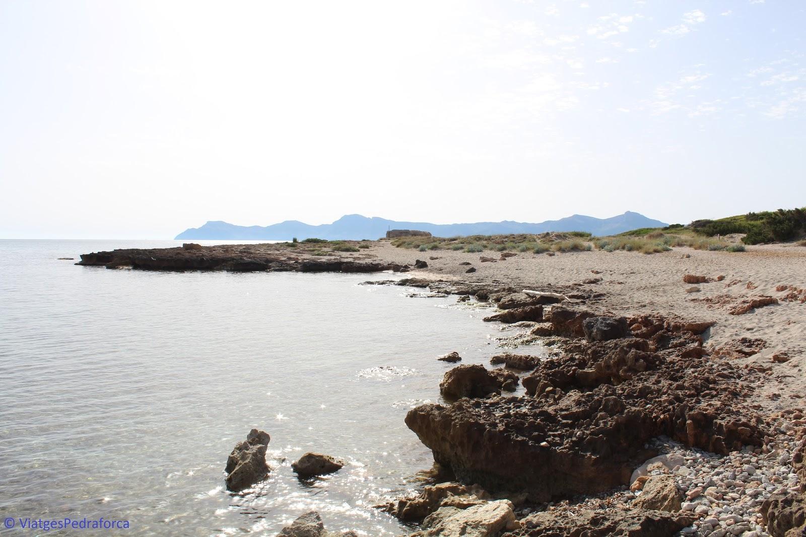 necròpolis de Son Real, arqueologia, talaiots, Mallorca, Illes Balears