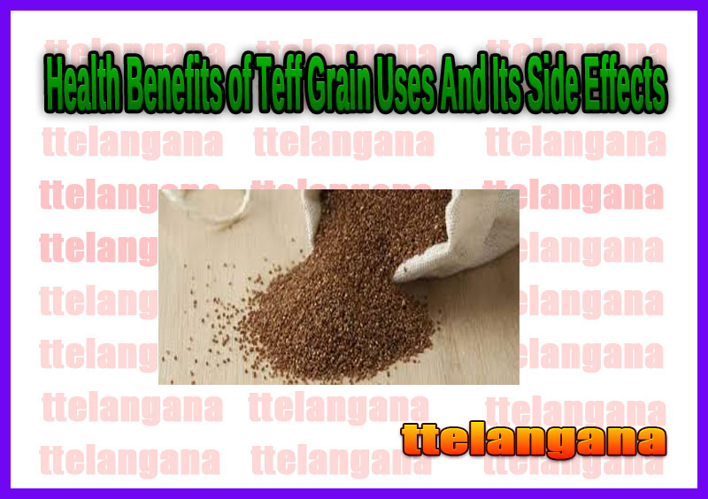 Health Benefits of Teff Grain Uses And Its Side Effects