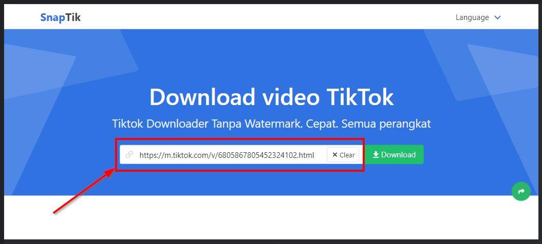 tempel tautan video tiktok di snaptik