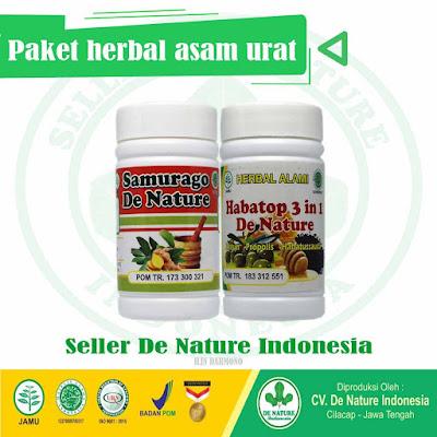 obat herbal penyakit asam urat