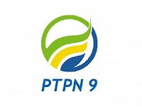 Lowongan Kerja PT Perkebunan Nusantara IX Juni 2021