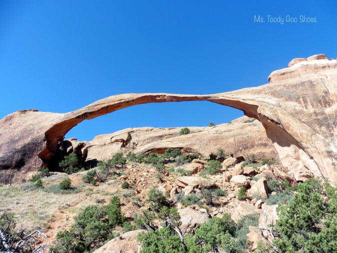 Landscape Arch, Arches National Park  --- Ms Toody Goo Shoes