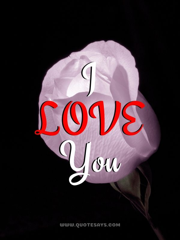 I Love You Images with Light Pink Rose