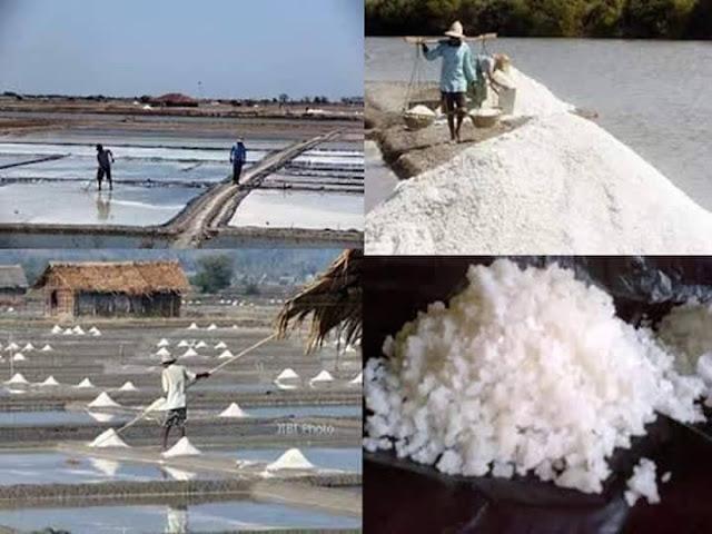 Gunakan Garam Alami Laut, Jauh Lebih sehat dari Garam Pabrik