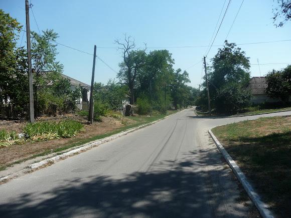 Васильківка. Вулиця Першотравнева