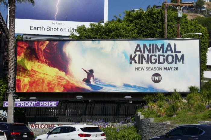 Animal Kingdom season 4 billboard