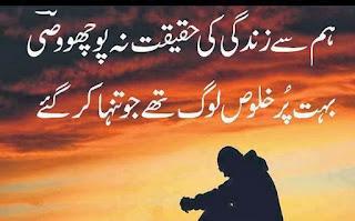 Hum say Zindagi ki Haqeqat na Pocho Wasi | Wasi Shah Poetry - Urdu Poetry Lovers