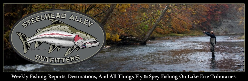Steelhead Alley Outfitters- Lake Erie Fly Fishing Guide Service and Weekly River Reports