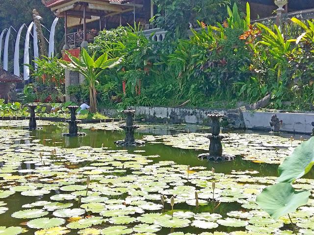 водный дворец (Tirta Gangga )