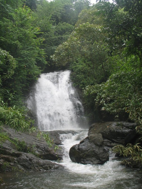 Best Place at Coorg