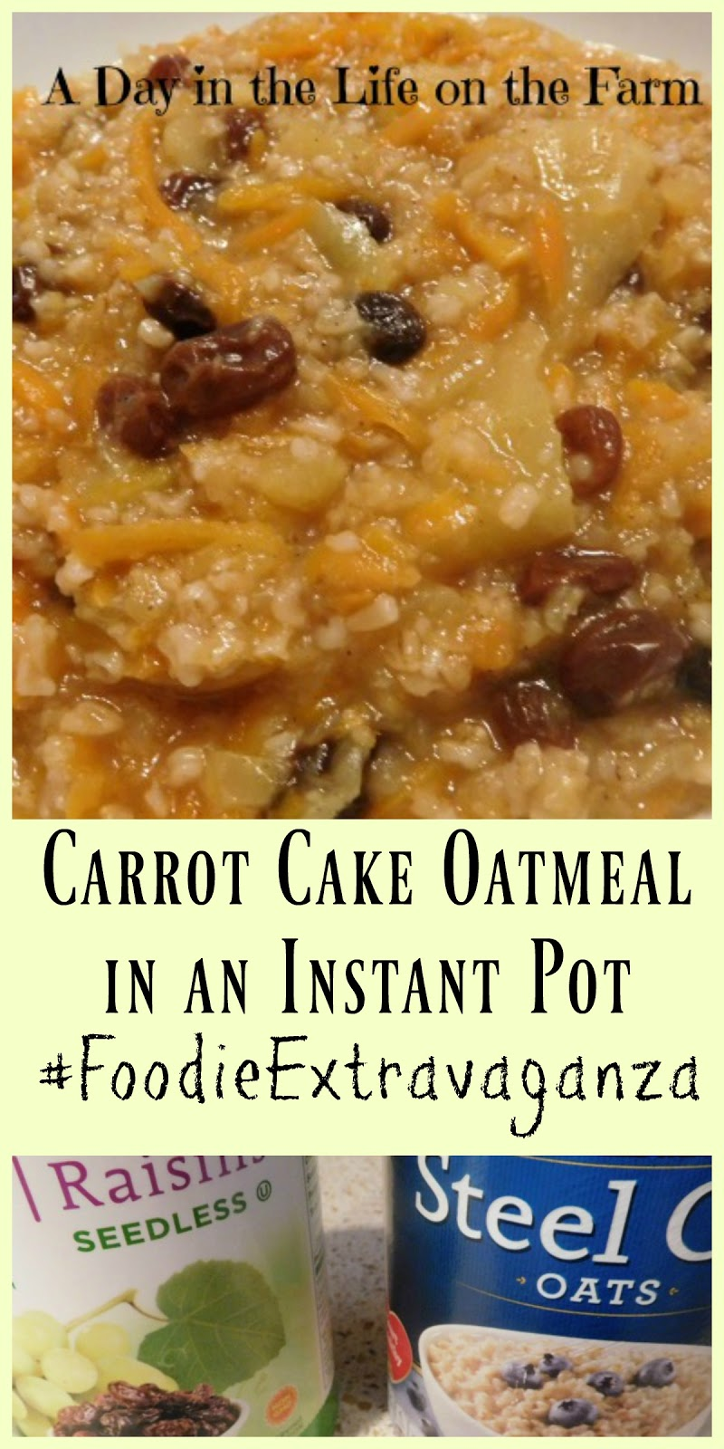 Instant Pot Carrot Cake Oatmeal With Quick Oats