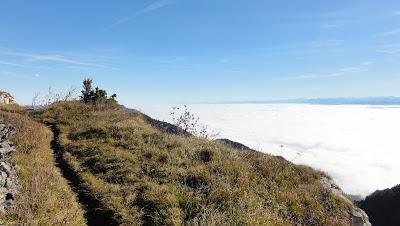 wandfluh-trail