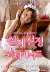 Sexy housekeeper (2015)