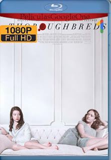Thoroughbreds [2017] [1080p BRrip] [Latino-Español] [GoogleDrive] LaChapelHD