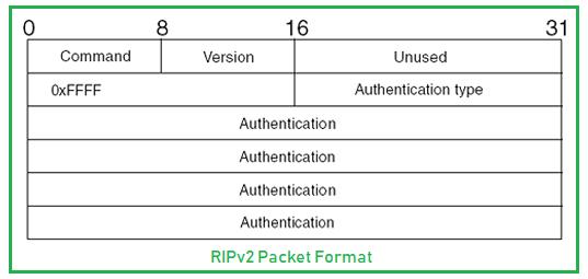 RIPv2 Packet Format