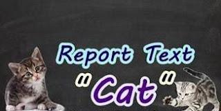 Contoh Report text Tentang Cat Dalam Bahasa Inggris Dan Artinya Contoh Report text Tentang Cat Dalam Bahasa Inggris Dan Artinya