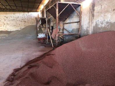 Dupla é presa por adulterar fertilizantes em MT