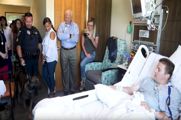 When Harmed Police Officer Gets See From K9 Companion, there's Not A Dry Eye In Health Center Room