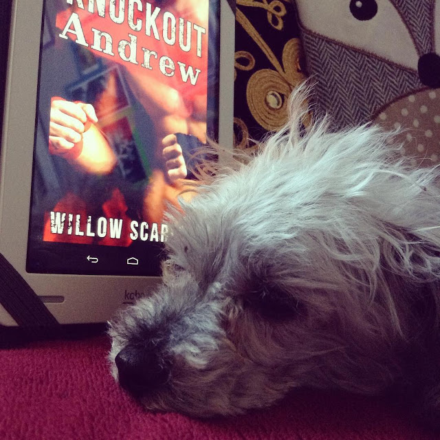 Murchie lays his head flat on a red blanket. Propped up behind him is a white Kobo with Knockout Andrew's cover on its screen. The cover features a tanned boxer's bare chest.