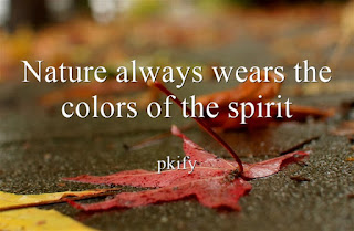 Nature always wear the colors of the spirit