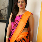 Hot Photos of Isha Chawla In Saree