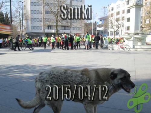 """2015/04/12 """"Sanki"""" bir bisiklet turu"""