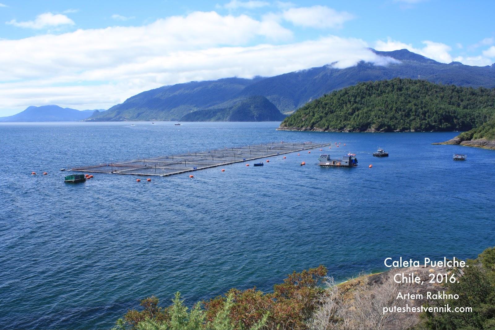 Рыбный питомник в Чили
