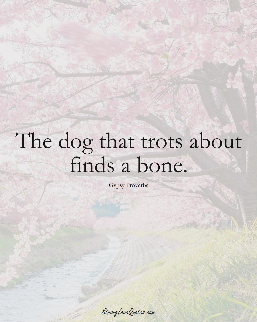 The dog that trots about finds a bone. (Gypsy Sayings);  #aVarietyofCulturesSayings