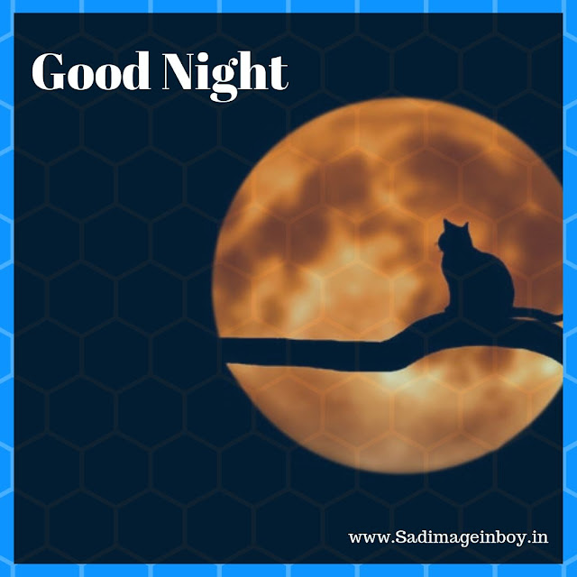 good night images Download For HD