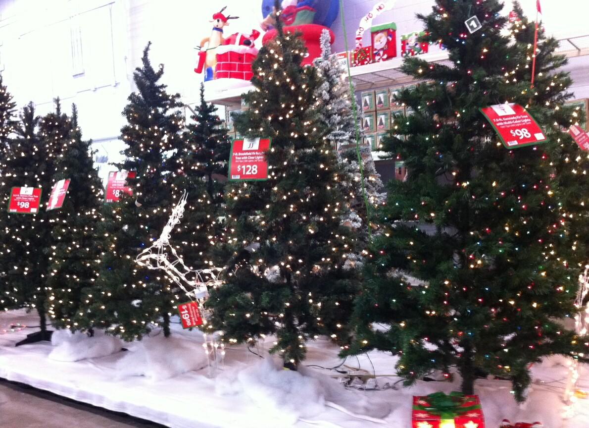 Tulsa Gentleman Wordless Wednesday Christmas Trees Already
