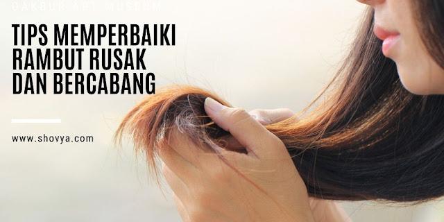 Tips Memperbaiki Rambut Rusak dan Bercabang