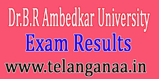 Dr.B.R Ambedkar University MA Final-M.Sc (Previous) Aug 2016 Exam Results