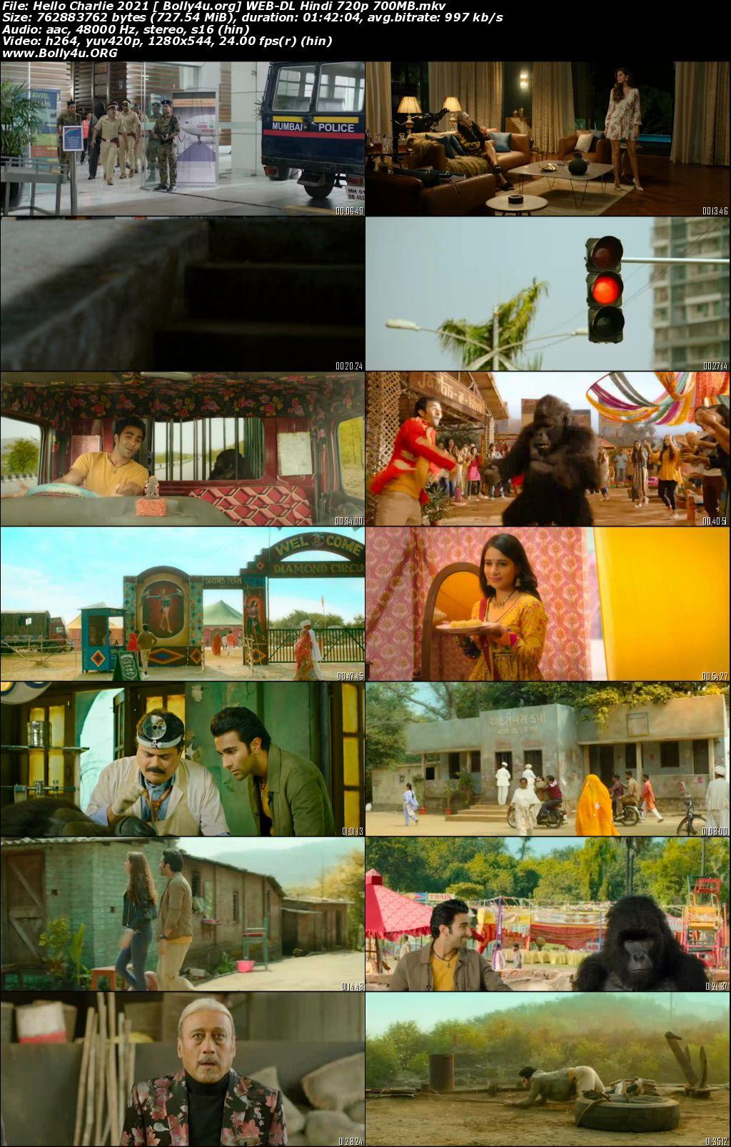 Hello Charlie 2021 WEB-DL 300Mb Hindi Movie Download 480p
