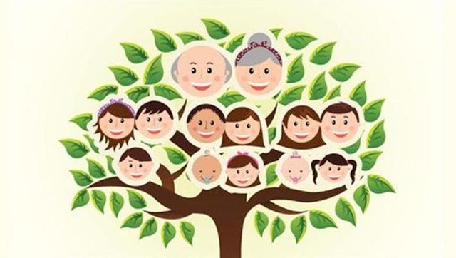 Soy Ağacı Nedir ? Soy Ağacı Nasıl Öğrenilir ?