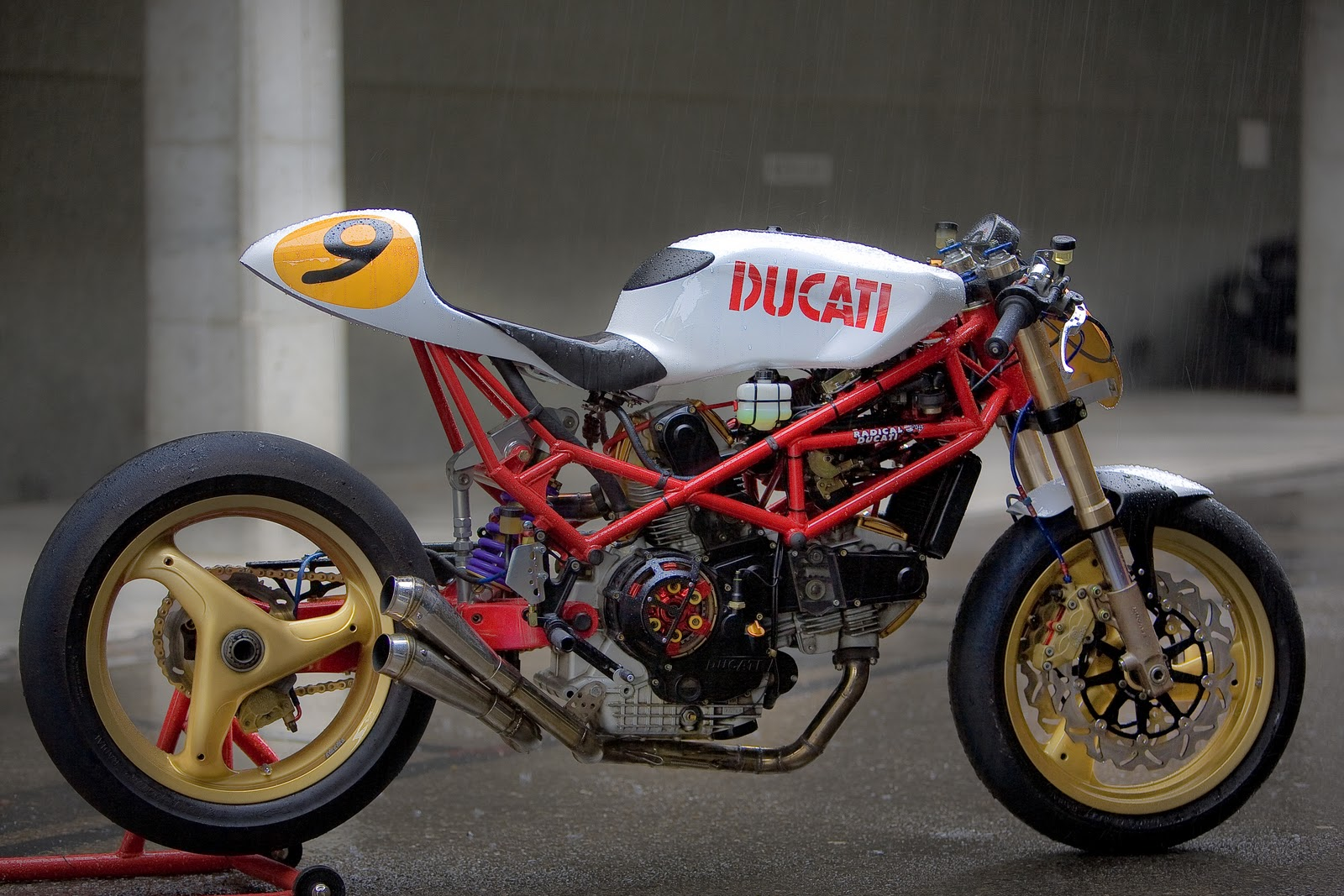Ducati Monster  Fuel Lines