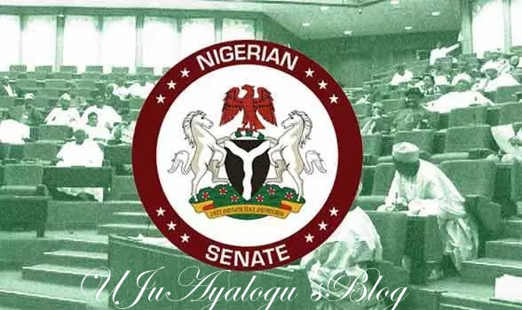 Magu: Senate considers going to S-Court